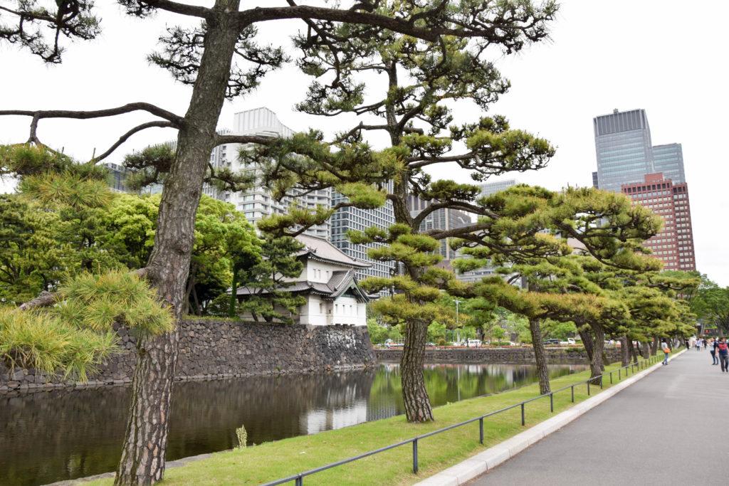 Hakoneyumoto, Nikko, Tokyo mintnmelon Babsi Sonnenschein 10