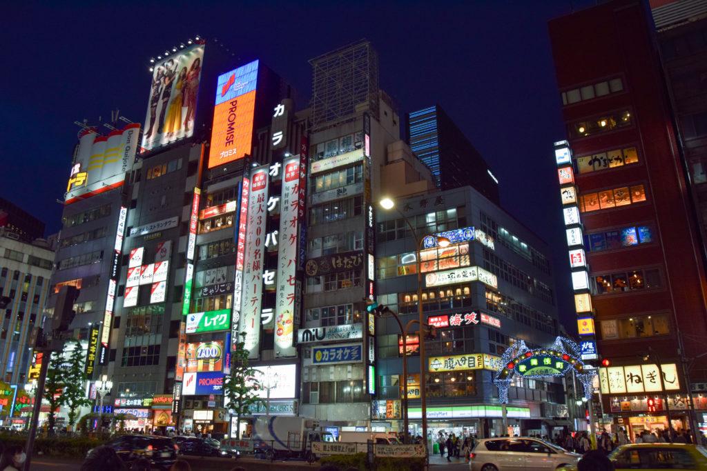 Hakoneyumoto, Nikko, Tokyo mintnmelon Babsi Sonnenschein 16