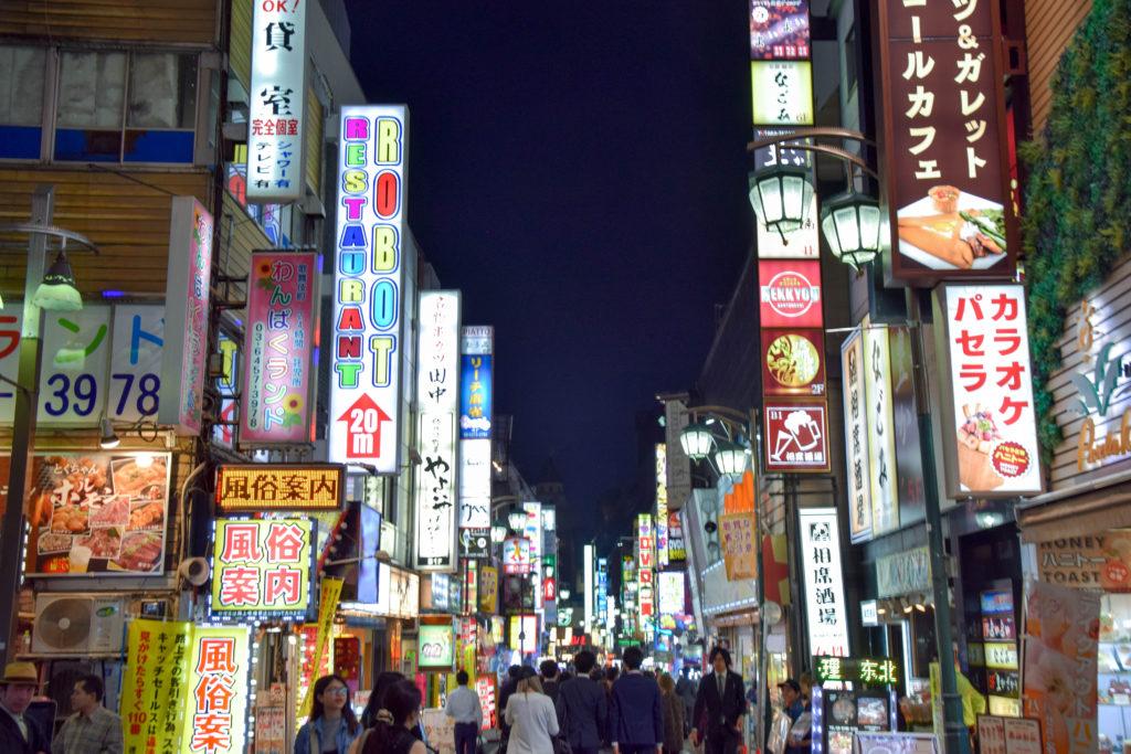 Hakoneyumoto, Nikko, Tokyo mintnmelon Babsi Sonnenschein 17