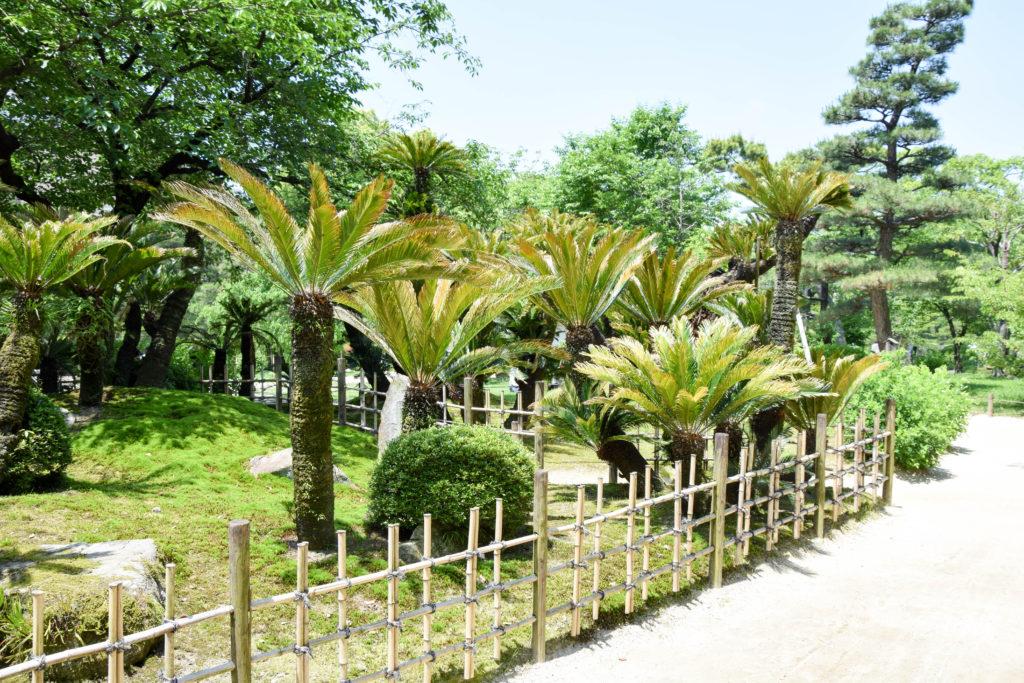 Japanreise Hiroshima und Miyajima mintnmelon Babsi Sonnenschein 19
