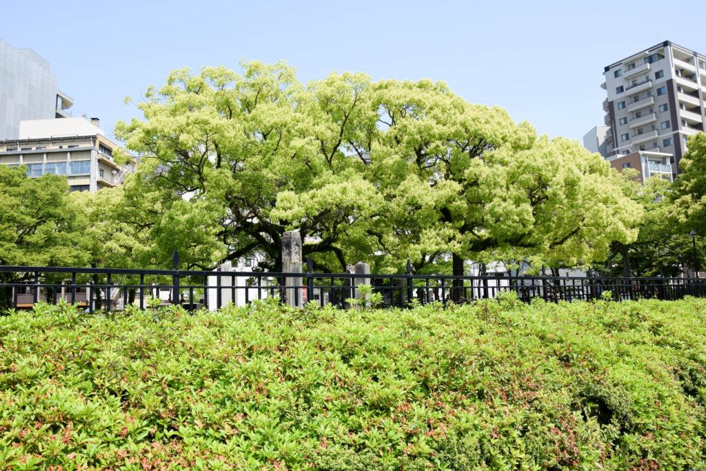 Japanreise Hiroshima und Miyajima mintnmelon Babsi Sonnenschein 23