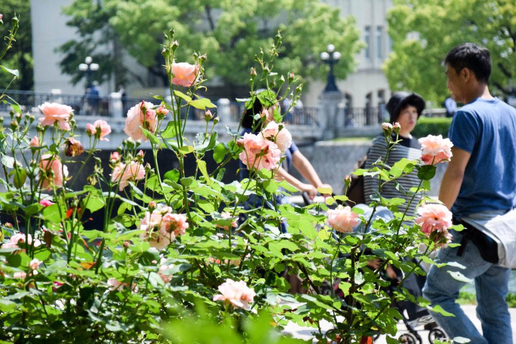 Japanreise Hiroshima und Miyajima mintnmelon Babsi Sonnenschein 24