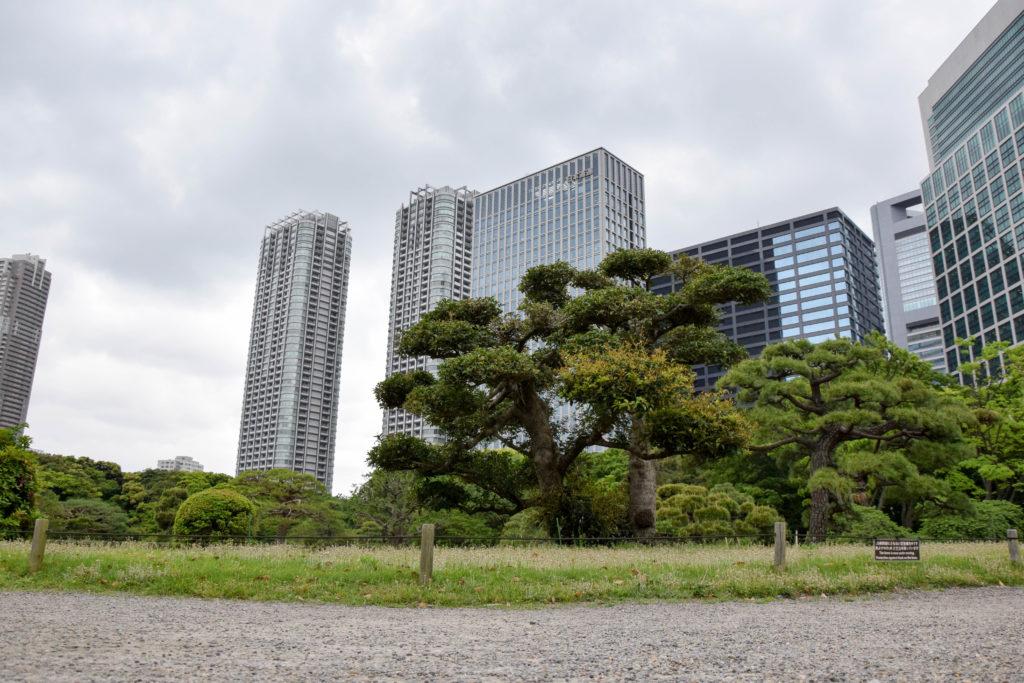 Japanreise Tokyo mintnmelon Babsi Sonnenschein 21